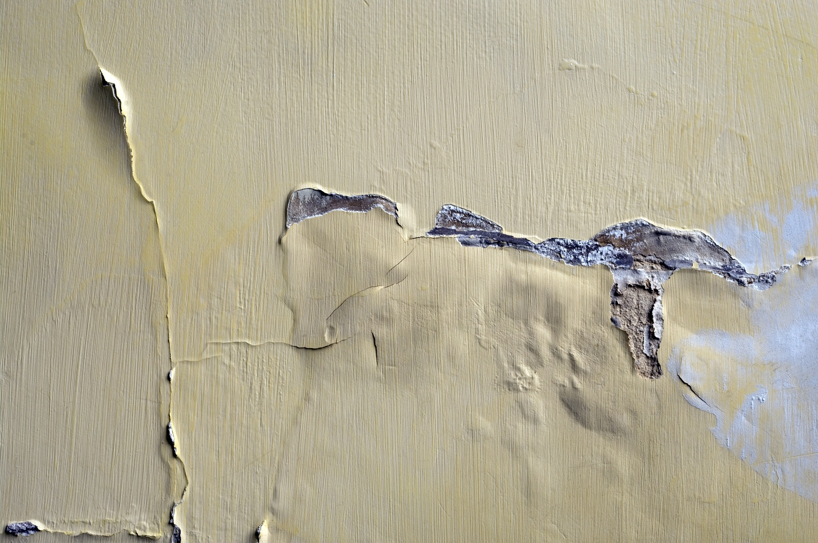 bubbling-on-interior-plaster-wall.jpg