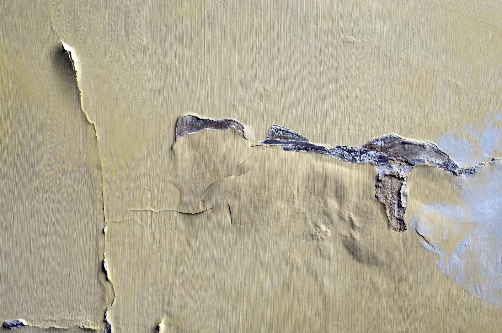 bubbling-on-interior-plaster-wall.jpg