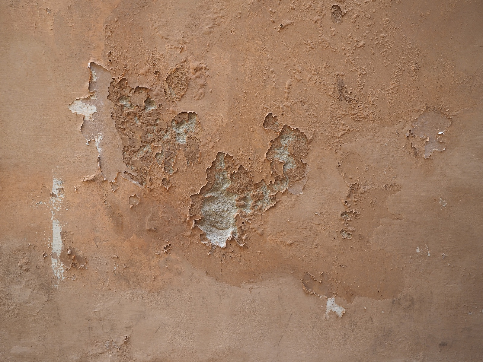 What S The Best Way To Fix Interior Walls That Have Water Damage